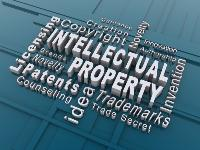 What is Intellectual Property Rights (IPRs)?