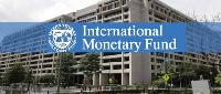 What is IMF quota? How it works?